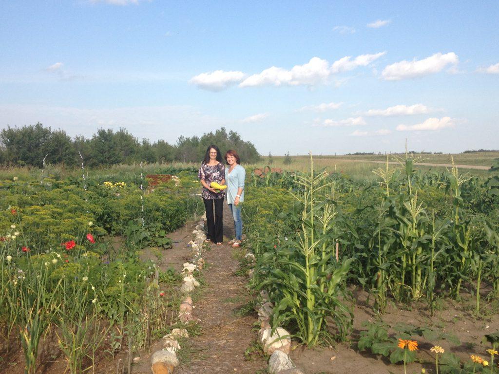 community garden Sarilia